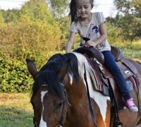 tn_urodziny w stajni otwock celestynów dąbrówka urodziny dla dzieci w siodle tanio jazdy konne nauka jazdy konnej stajniamirabell (27)